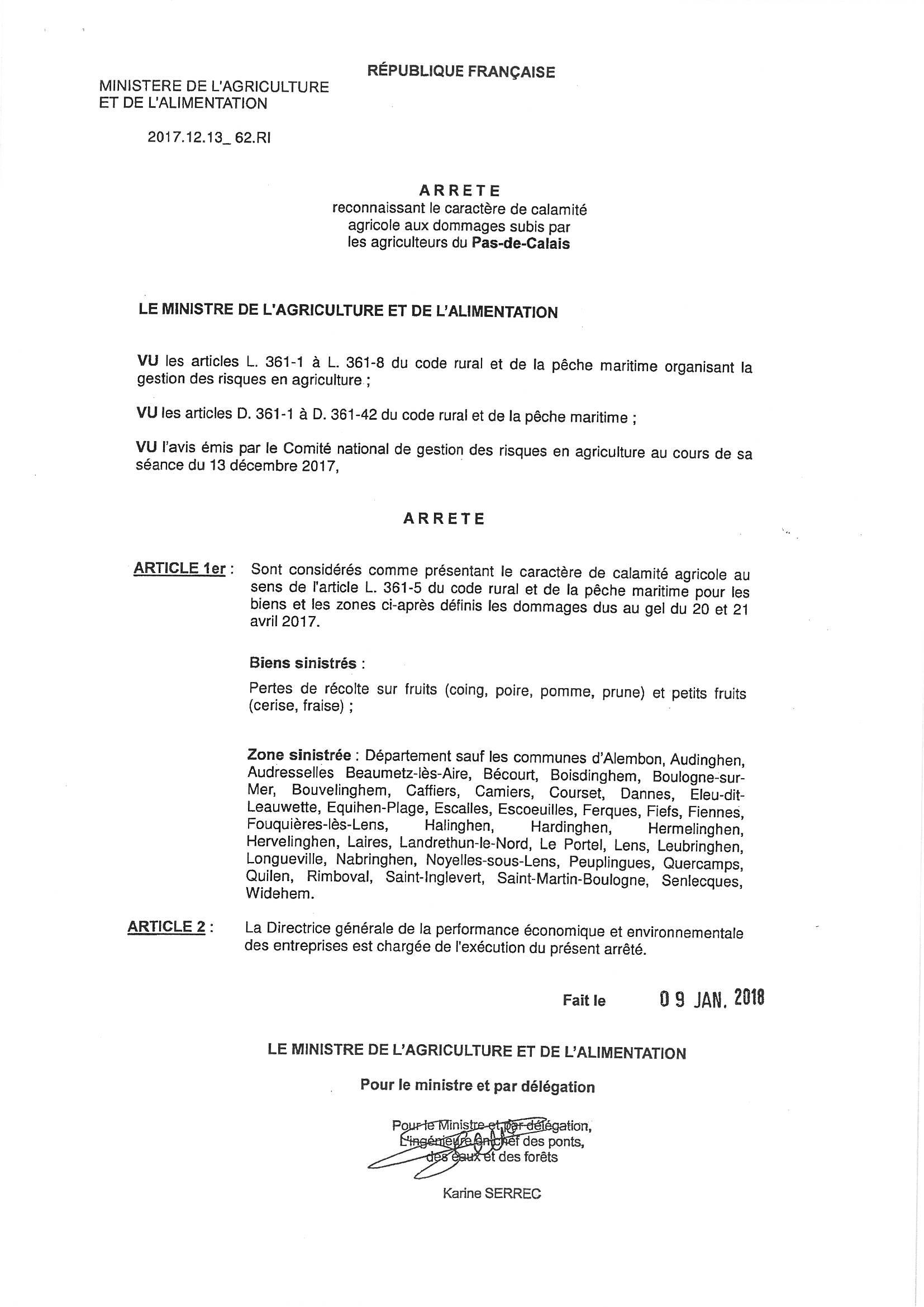 calamites agricoles_002.jpg