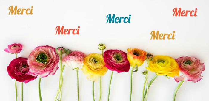 merci-2.png