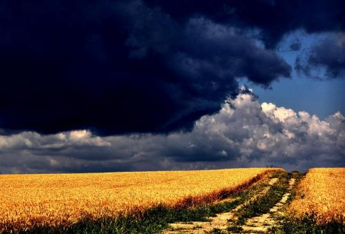 Storm a Comin'.jpg
