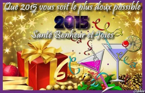 artfichier_787797_4410503_201412284342497.jpg