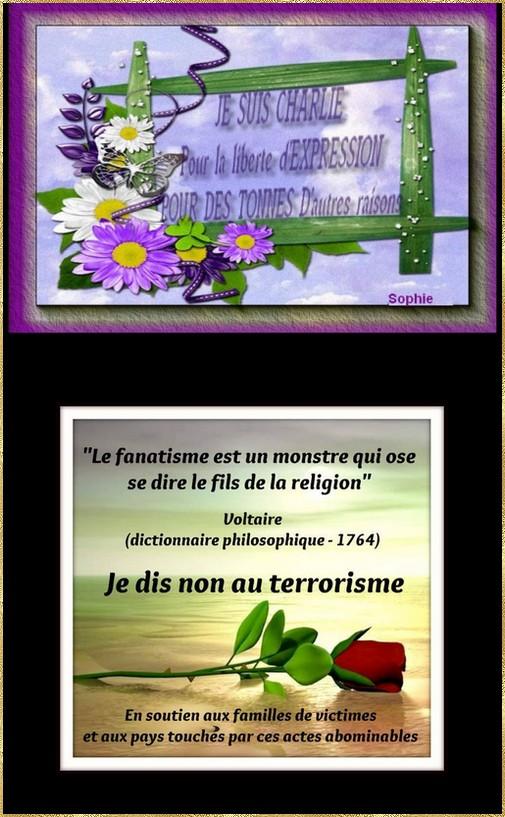 artfichier_787797_5284925_201511155213612.jpg