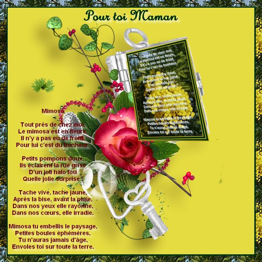 mimosa maman.jpg
