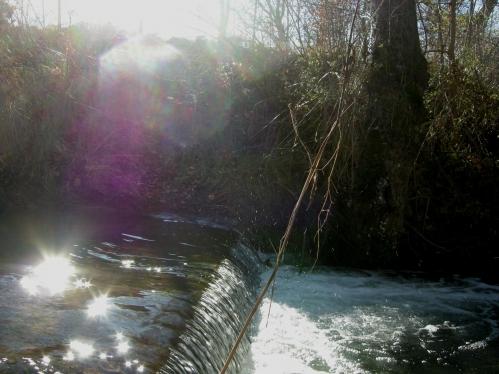 waterfallLL.JPG
