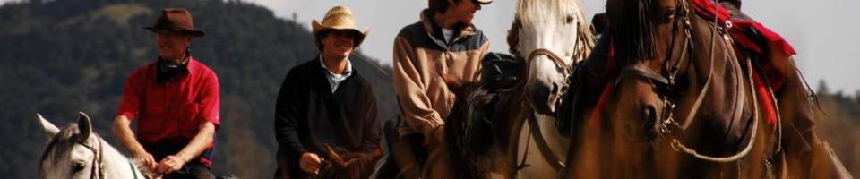 Les Fermes Equestres du Vercors - La Chevauchée - La Renardière
