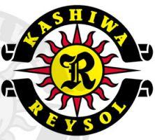 Kashiwa Reysol.jpg