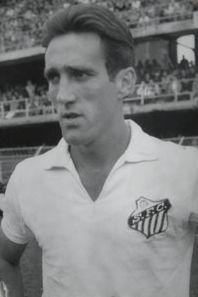 Toninho Guerreiro.jpg