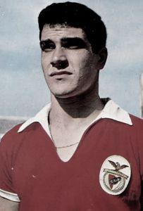 Raul Machado.jpg