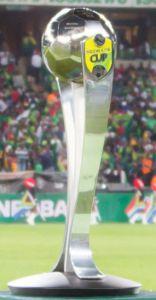 Coupe d'Afrique du Sud.jpg