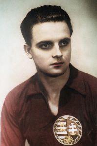 Ferenc Deak.jpg