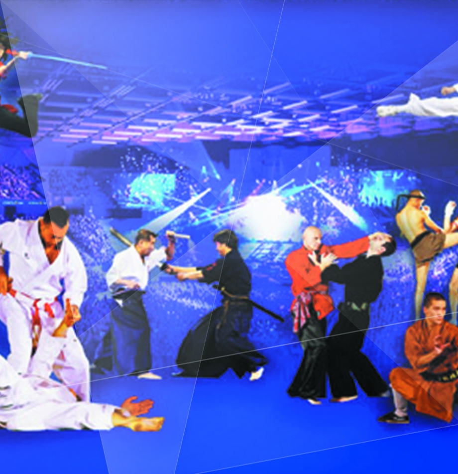 festival-des-arts-martiaux-paris-bercy.jpg