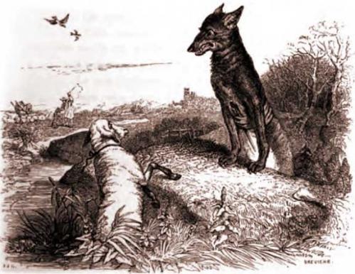Loup et agneau.jpg