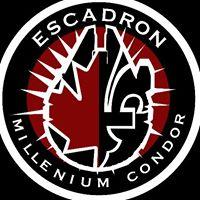 Escadron MCBD.jpg