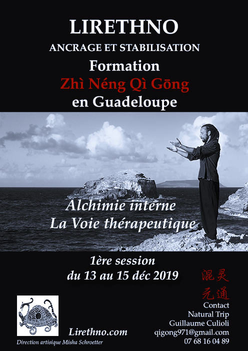 2019 AfficheFormation-ZQG-Gwada.jpg
