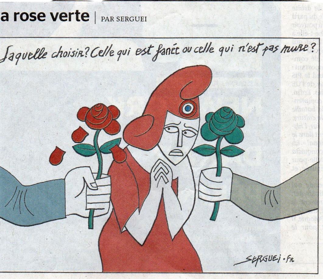 rosefaneerosepasmure001.jpg