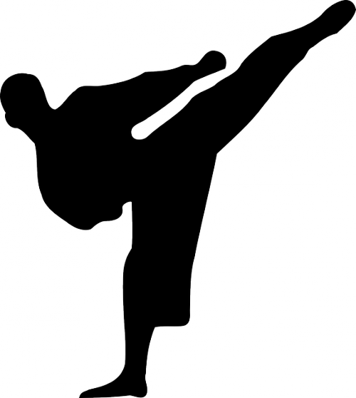 dessin silhouette kickboxing