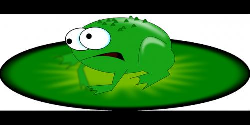 dessin grenouille sur nénuphar