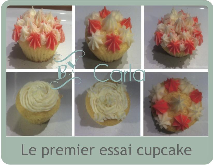 le premier essai cupcake.jpg