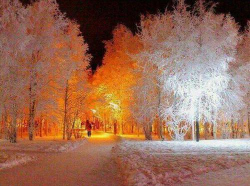 Nuit orange hiver.PNG