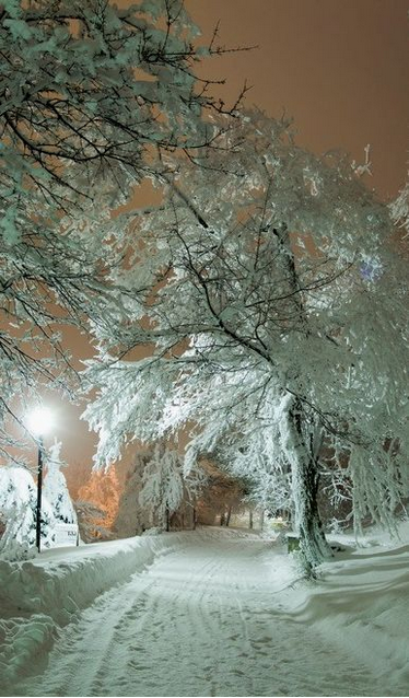 Snowy Night Russia photo.PNG