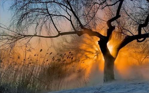 Soleil d'hiver.PNG