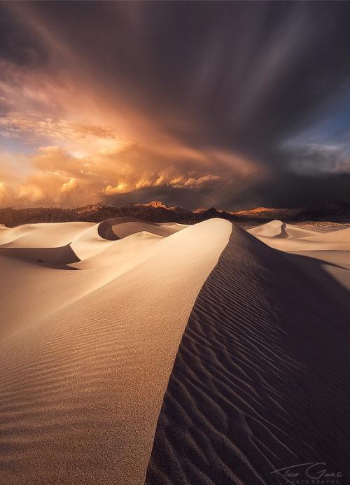 Dune dans le soleil.PNG