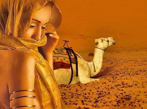 Femme du désert.PNG
