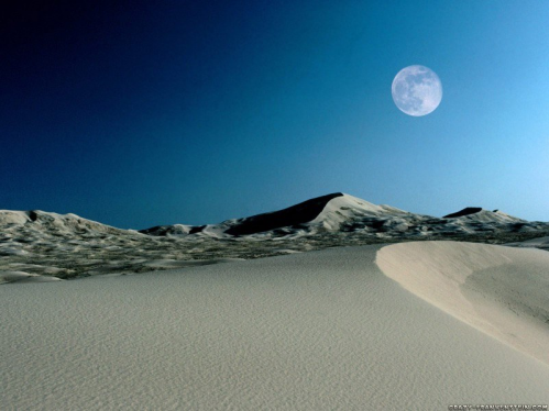 Lune Dune.PNG