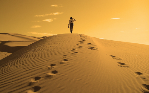 Perdu dans le désert - Copy.PNG
