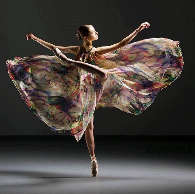 The Art of Dance.... by Gene Schaivone.PNG