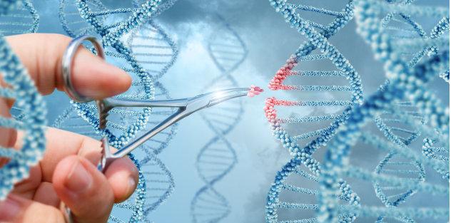 ADN.PNG