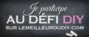 defi-diy-lemeilleurdudiy-300-125.jpg
