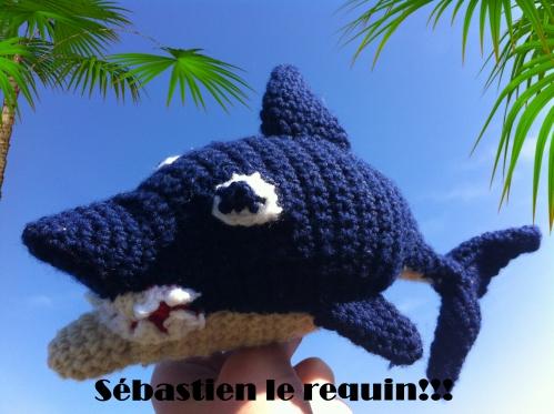 montage requin 3.jpg