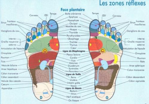 zones-reflexes-pieds.jpg