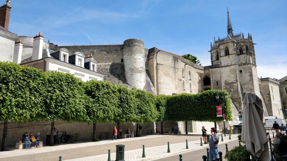 Amboise et son château
