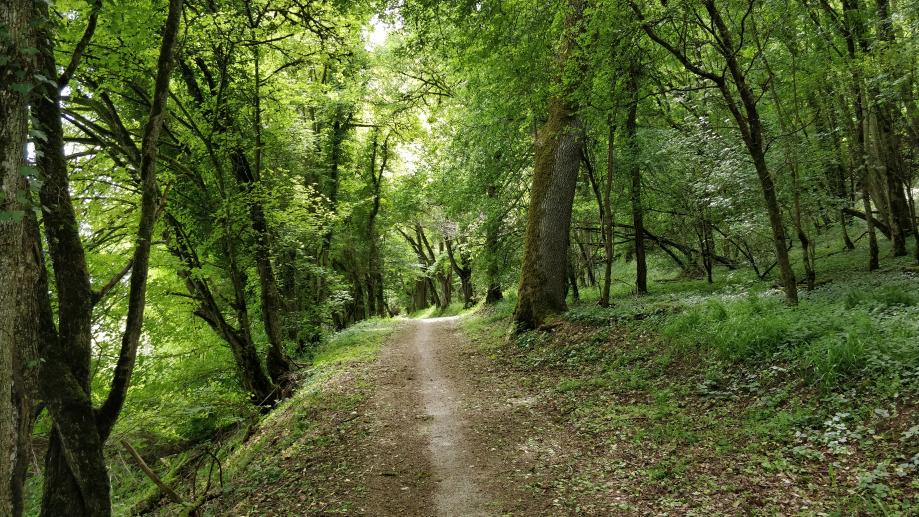 Passage en sous bois très agréable
