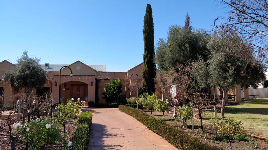 Calabria Wines