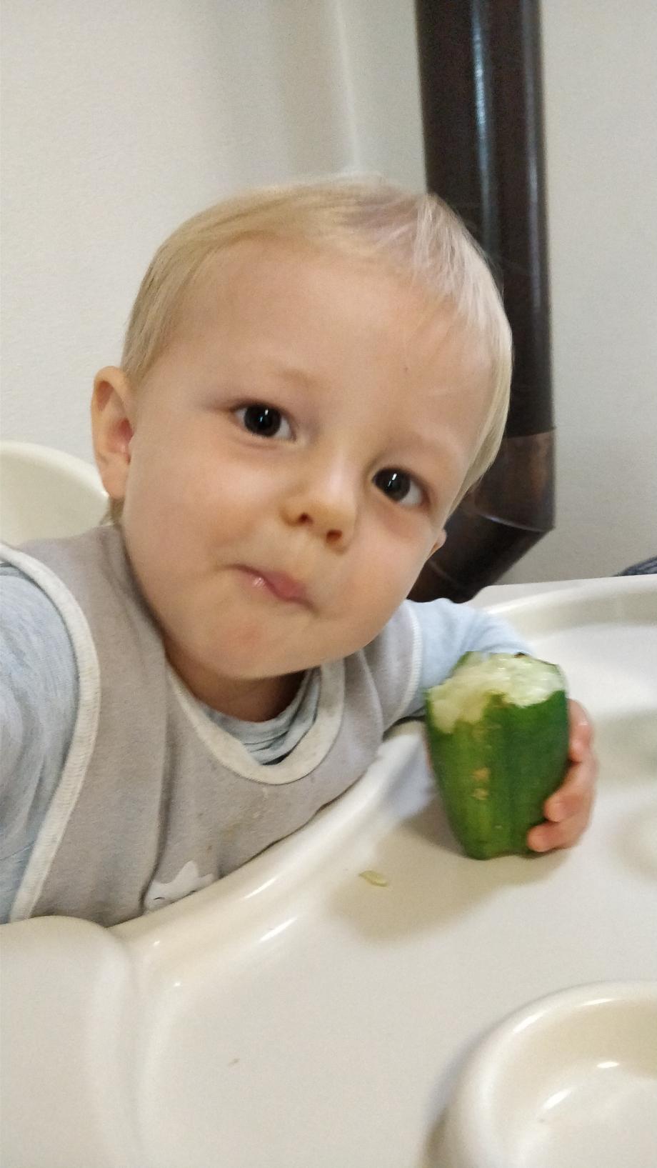 Il adore les concombres !