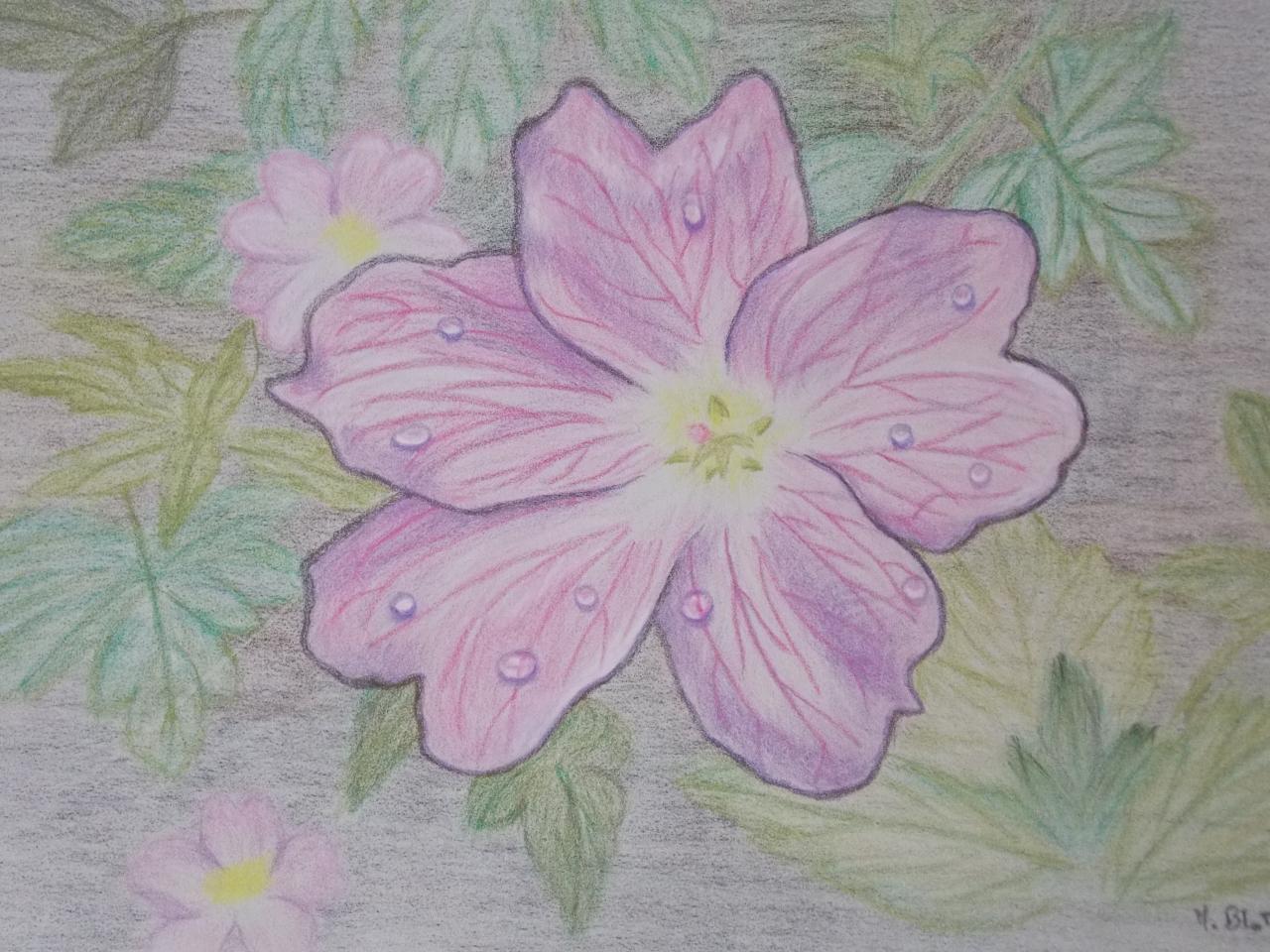 Petite Fleur Rose Dans Un Bosquet Pastel Et Dessin