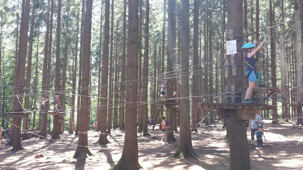rencontre gratuit forest