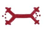 symbole kabyle le lézard
