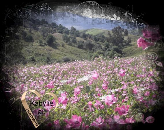 A quoi ressemble la kabylie au printemps