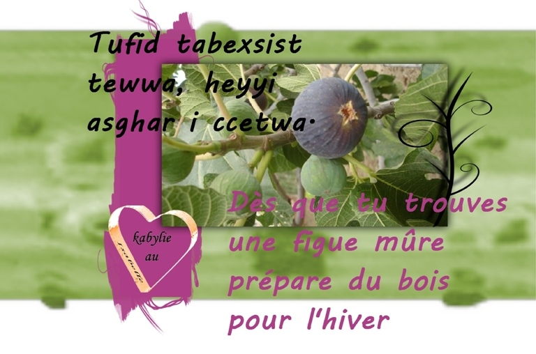 proverbe kabyle sur les figues