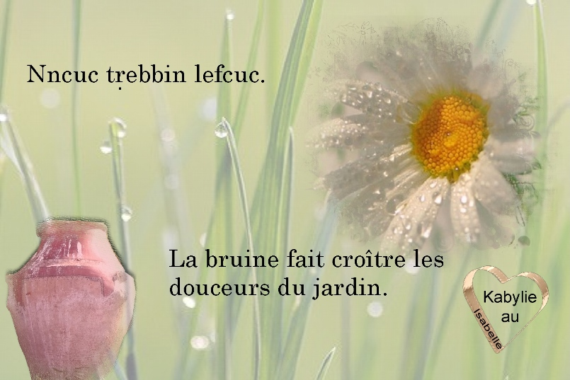 proverbe kabyle et sa traduction