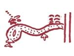symbole kabyle du serpent