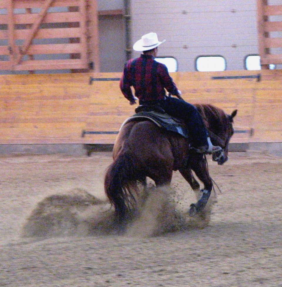 Canfora Training Stables