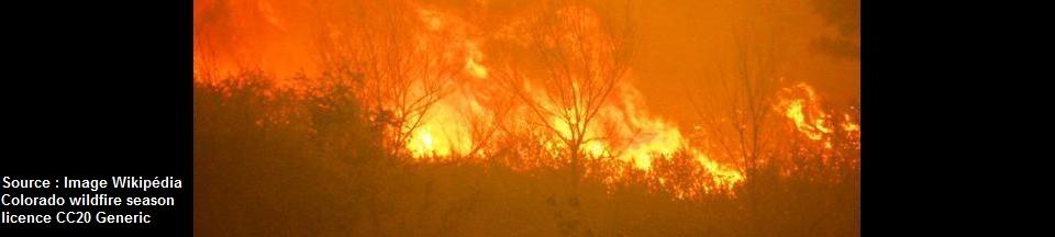 ALERTE-FIRE (Simulateur ludico-tactique d'incendies de forêt)