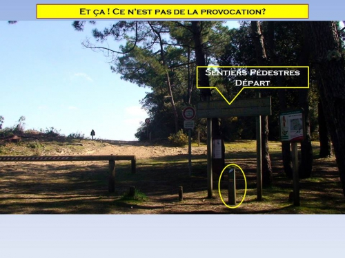 Provocation 1.jpg