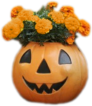 bouquet halloween.png
