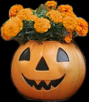 bouquet halloween.png