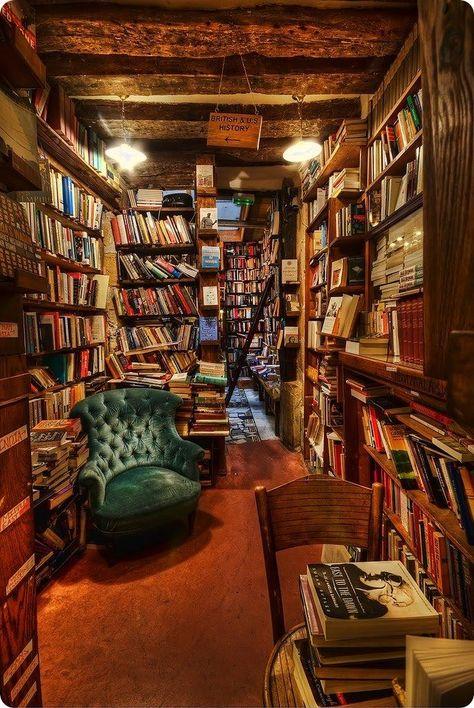 bibliothèque pleine livres.jpg